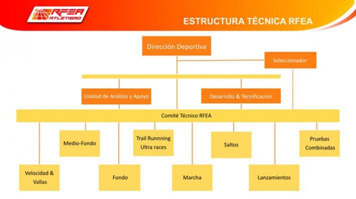 La FACV muy presente en el nuevo Comité Técnico RFEA/La FACV molt present al nou Comité Tècnic RFEA
